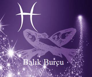 BALIK BURCU 2017_0.jpg